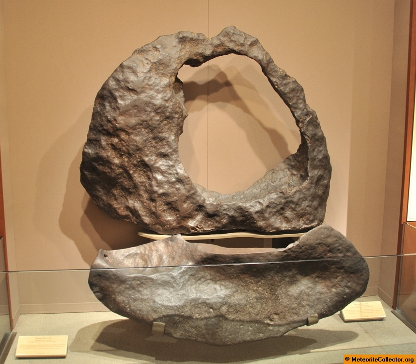 ring meteorite anvil as it sits in the Smithsonian Museum of Natural History